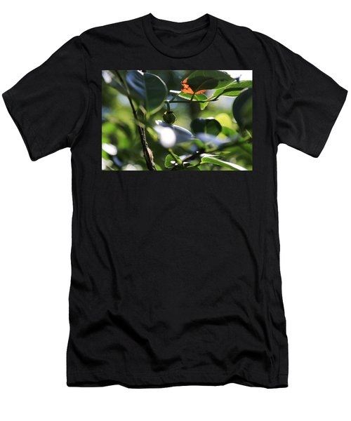Small Nature's Beauty Men's T-Shirt (Athletic Fit)