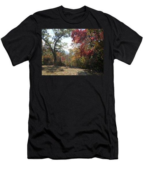 Smokies 12 Men's T-Shirt (Athletic Fit)