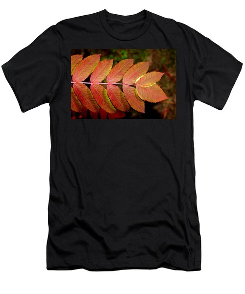 Smooth Sumac Men's T-Shirt (Athletic Fit)