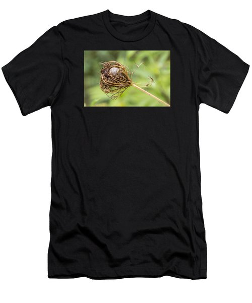 Snail Nestled In Queen Anne's Lace Men's T-Shirt (Athletic Fit)