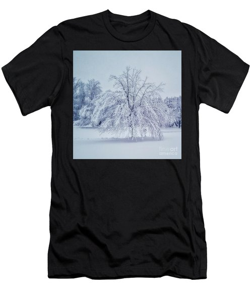 Snow Encrusted Tree Men's T-Shirt (Athletic Fit)
