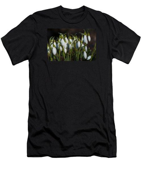 Snowdrops Men's T-Shirt (Athletic Fit)