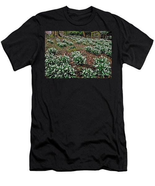 Snowdrops In Spring Woodland Men's T-Shirt (Athletic Fit)