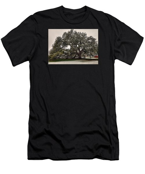 Snowfall On Emancipation Oak Tree Men's T-Shirt (Athletic Fit)