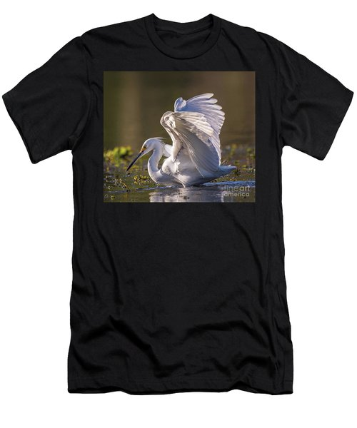 Snowy Egret Hunting - Egretta Thula Men's T-Shirt (Athletic Fit)