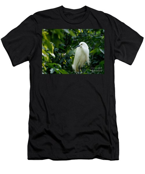 Snowy Egret In The Trees Men's T-Shirt (Slim Fit)