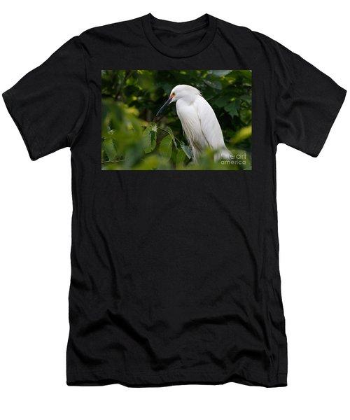 Snowy Egret Men's T-Shirt (Slim Fit)