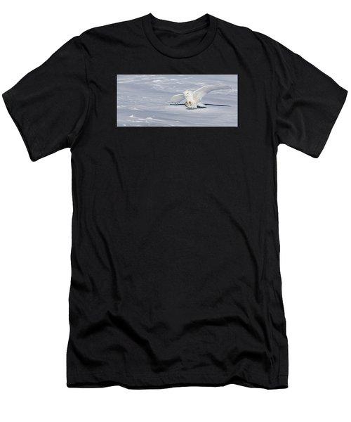 Snowy Owl Men's T-Shirt (Athletic Fit)