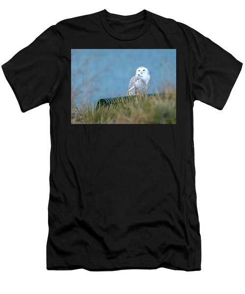 Snowy Owl On A Park Bench Men's T-Shirt (Athletic Fit)