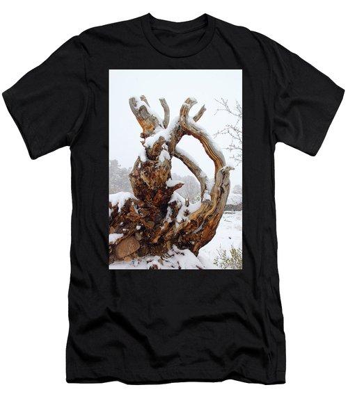 Snowy Roots Men's T-Shirt (Athletic Fit)