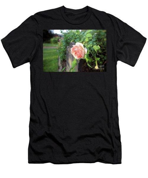Soft Rose Men's T-Shirt (Athletic Fit)
