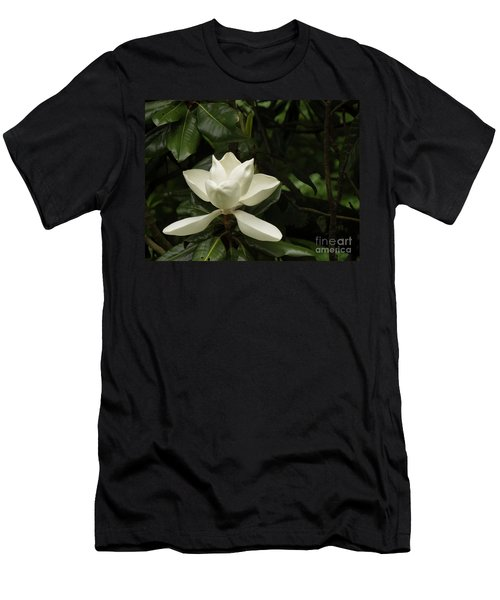 Softly Dreaming Men's T-Shirt (Athletic Fit)