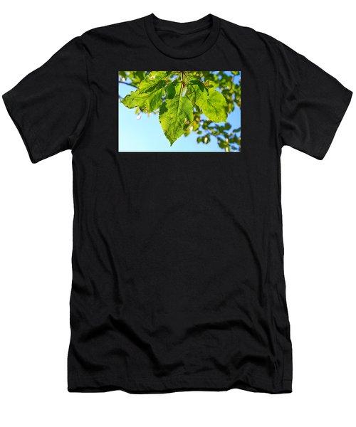 Solar Panels Men's T-Shirt (Athletic Fit)