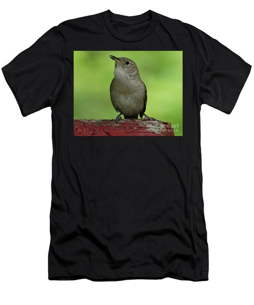 Song Bird Men's T-Shirt (Athletic Fit)