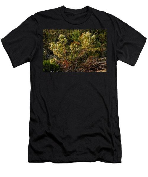 Sonoran Twist Men's T-Shirt (Athletic Fit)