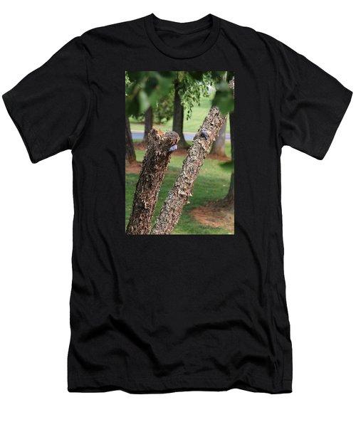 Southern Blue Birds Men's T-Shirt (Athletic Fit)