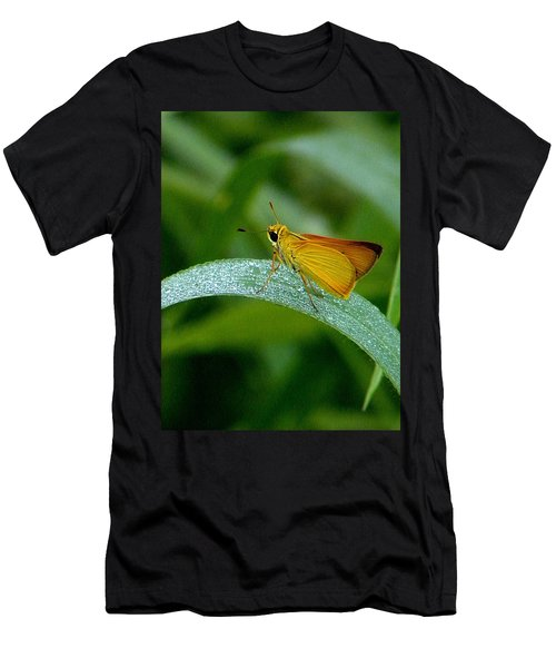 Southern Skipperling Butterfly  000 Men's T-Shirt (Athletic Fit)