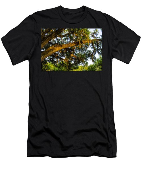 Spanish Moss In The Gloaming Men's T-Shirt (Athletic Fit)