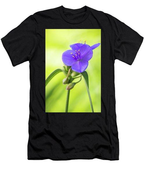 Spiderwort Wildflower Men's T-Shirt (Athletic Fit)