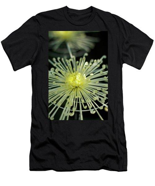 Spiral Chryanth Men's T-Shirt (Athletic Fit)