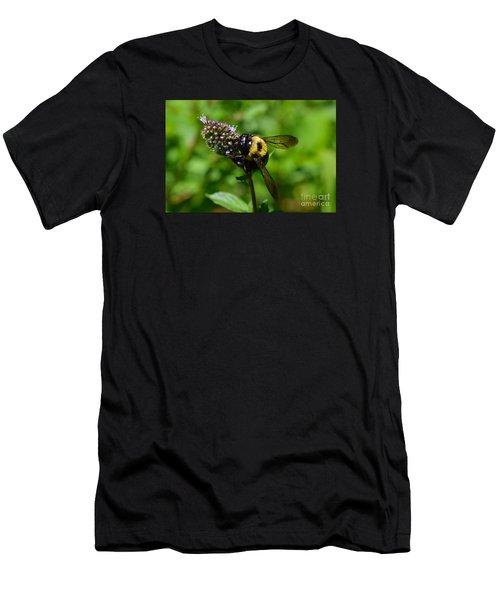 Spot, My Bumblebee Men's T-Shirt (Athletic Fit)