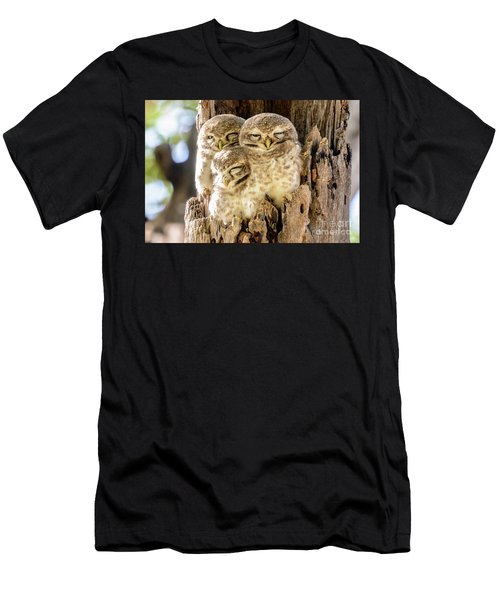 Spotted Owlets Men's T-Shirt (Athletic Fit)