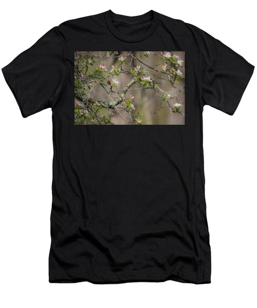 Spring Blossoms 2 Men's T-Shirt (Athletic Fit)