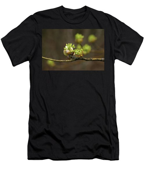 Spring Buds 9365 H_2 Men's T-Shirt (Athletic Fit)