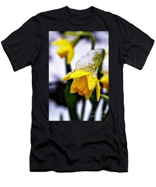 Spring Daffodil Flowers In Snow Men's T-Shirt (Athletic Fit)