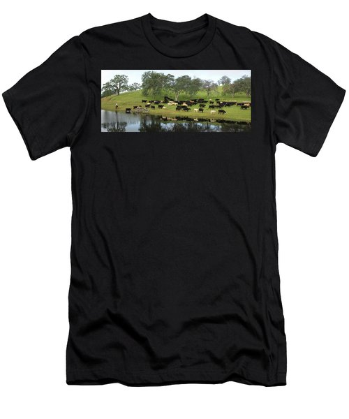 Spring Gather Men's T-Shirt (Athletic Fit)