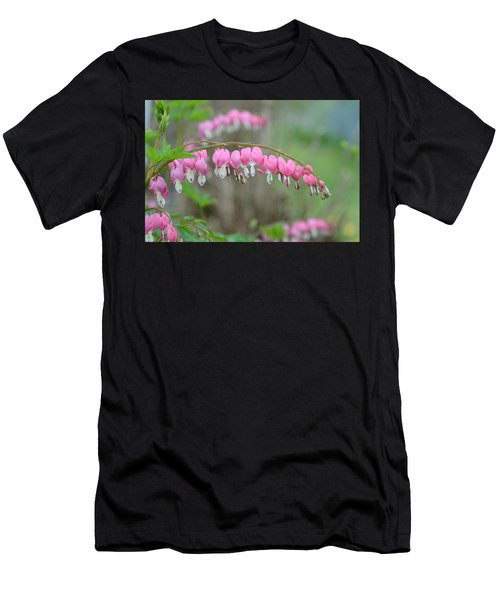 Spring Hearts Men's T-Shirt (Athletic Fit)