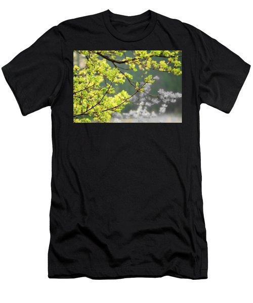 Spring In The Arboretum Men's T-Shirt (Athletic Fit)
