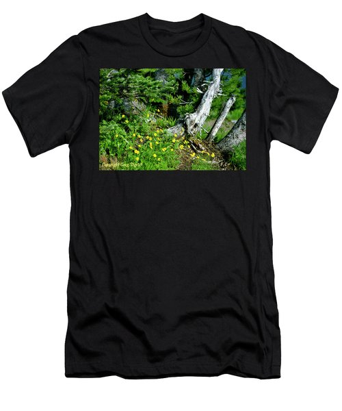 Spring In The High Country Men's T-Shirt (Athletic Fit)