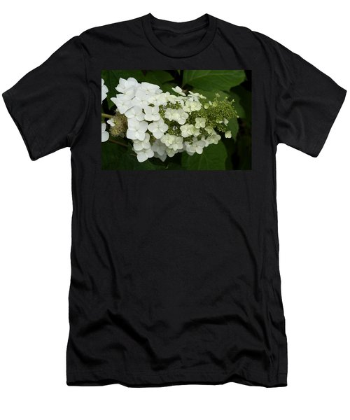 Spring Is Busting Out All Over Men's T-Shirt (Athletic Fit)