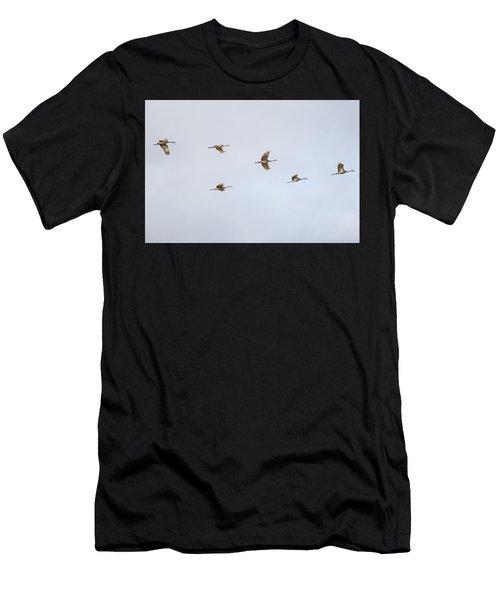 Spring Migration 4 Men's T-Shirt (Athletic Fit)