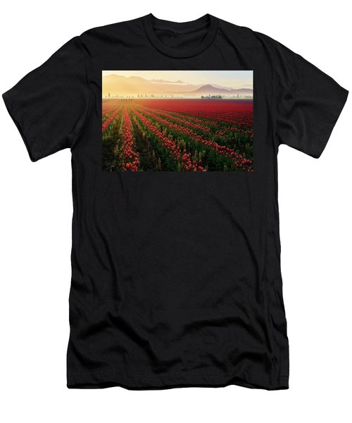 Spring Palette Men's T-Shirt (Athletic Fit)