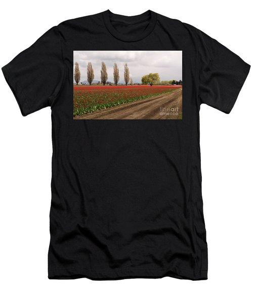 Spring Red Tulip Field Landscape Art Prints Men's T-Shirt (Athletic Fit)