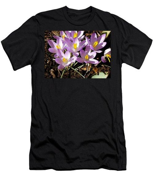 Springtime Crocuses  Men's T-Shirt (Athletic Fit)