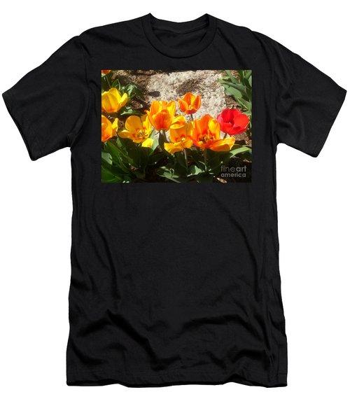 Springtime Flowers Men's T-Shirt (Athletic Fit)