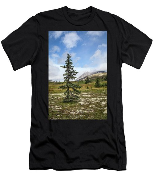 Spruce Tree In Summer Men's T-Shirt (Athletic Fit)