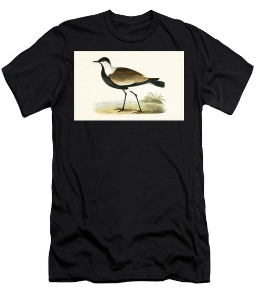 Spur Winged Plover Men's T-Shirt (Athletic Fit)