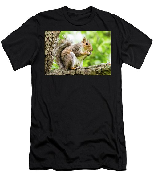 Squirrel Eating On A Branch Men's T-Shirt (Athletic Fit)