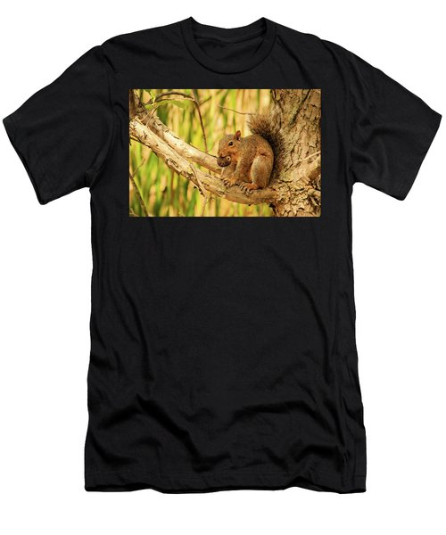 Squirrel In A Tree In The Marsh Men's T-Shirt (Athletic Fit)