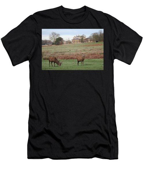 Stags In Richmond Park Men's T-Shirt (Athletic Fit)
