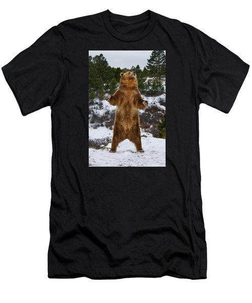 Standing Grizzly Bear Men's T-Shirt (Athletic Fit)