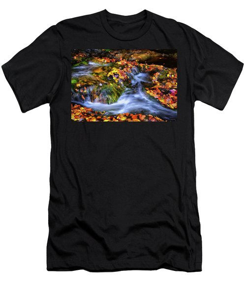 Standing In Motion - Leaves On A Rock 007 Men's T-Shirt (Athletic Fit)