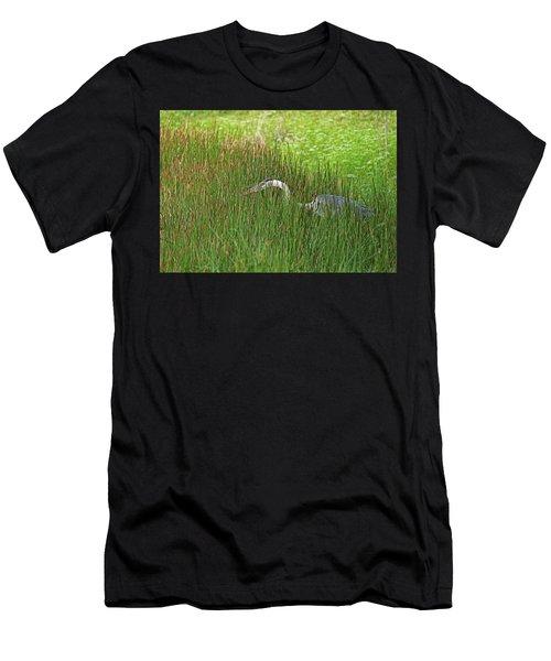 Stealth Heron Men's T-Shirt (Athletic Fit)