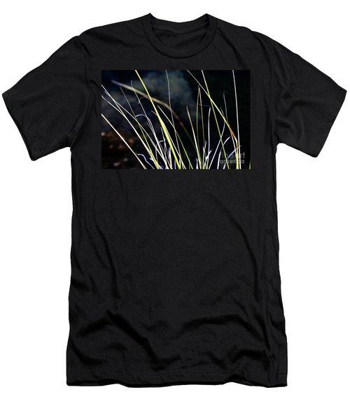 Stems Men's T-Shirt (Athletic Fit)