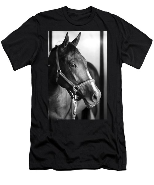 Horse And Stillness Men's T-Shirt (Athletic Fit)