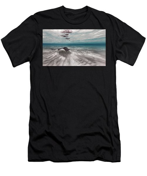 Stingray Across The Sand Men's T-Shirt (Athletic Fit)